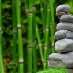 Ładny ,a także uporządkowany zieleniec to zasługa wielu godzin spędzonych  w jego zaciszu podczas pielegnacji.